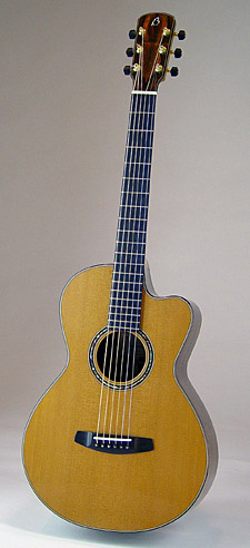 PinnyWhole%20copy-Guitar-Luthier-LuthierDB-Image-11